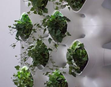 Sustentabilidad, ecología y bioclimática: crean sistema que produciría aire fresco