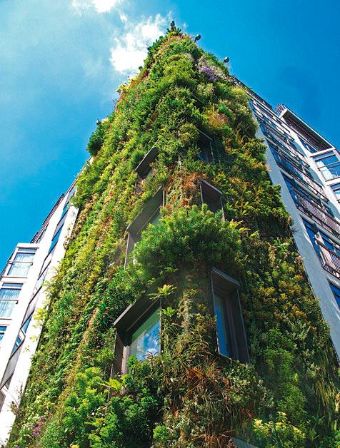 Jardines verticales el verde toma el vuelo abilia i for Jardines verdes verticales