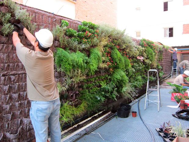 Jard n vertical en cl nica usp sagrado coraz n sevilla for Jardines verticales sevilla
