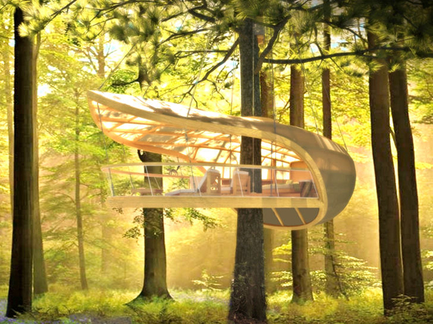Casas del rbol en los bosques de Canad ABILIA I Blog I