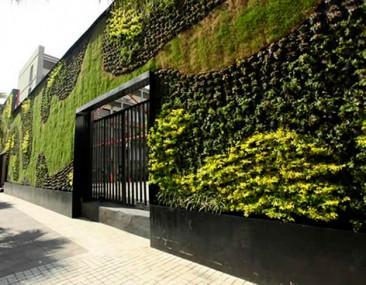 Ebrard inaugura un jardín vertical en el Centro del DF