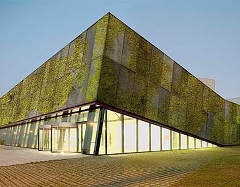 Concreto Biológico para muros verdes