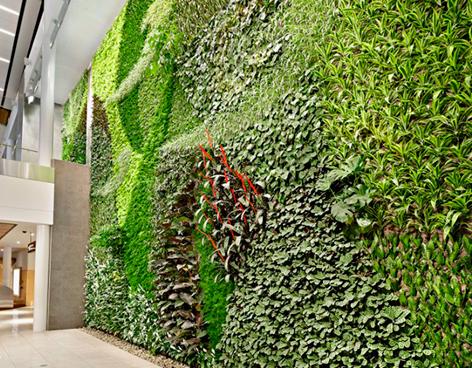 Jardín vertical en Aeropuerto de Canadá