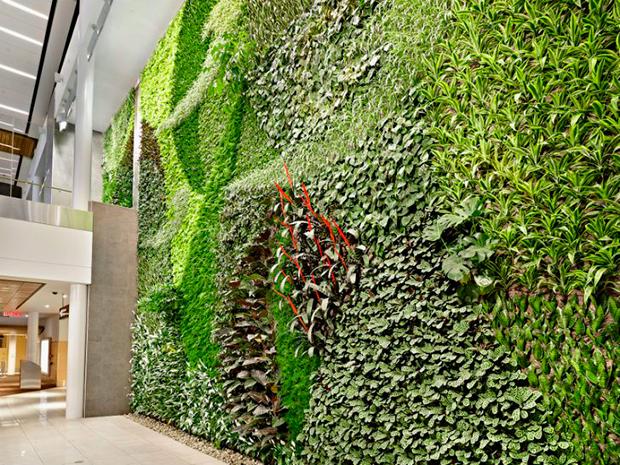 Jard n vertical en aeropuerto de canad abilia i blog i for Reja para jardin vertical