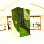 Collapsible Leaves - Azuma Makoto