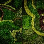 Hojas Plegables: arte y sustentabilidad