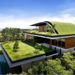 9 beneficios de los tejados verdes