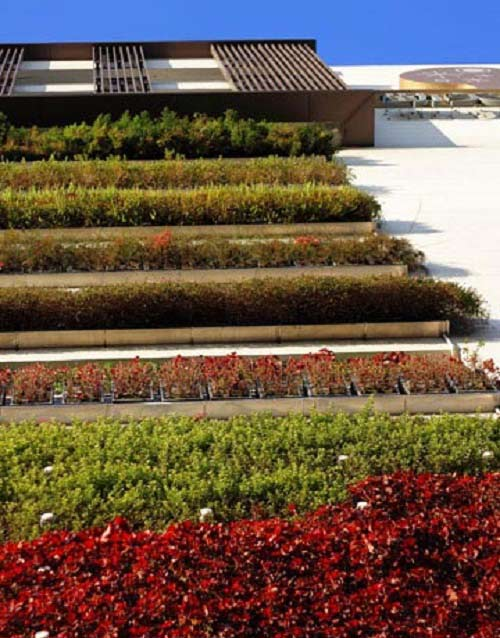 12-Taiwan-Vertical-Garden