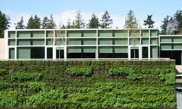 13-Green-Walls