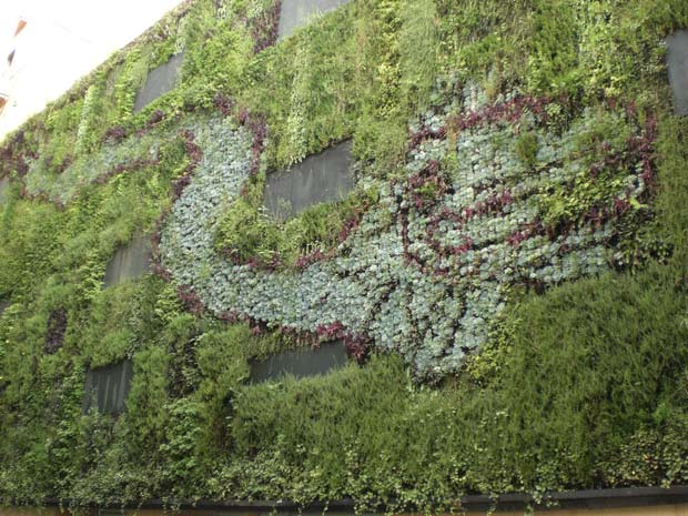 6-Mexico-City-Vertical-Garden