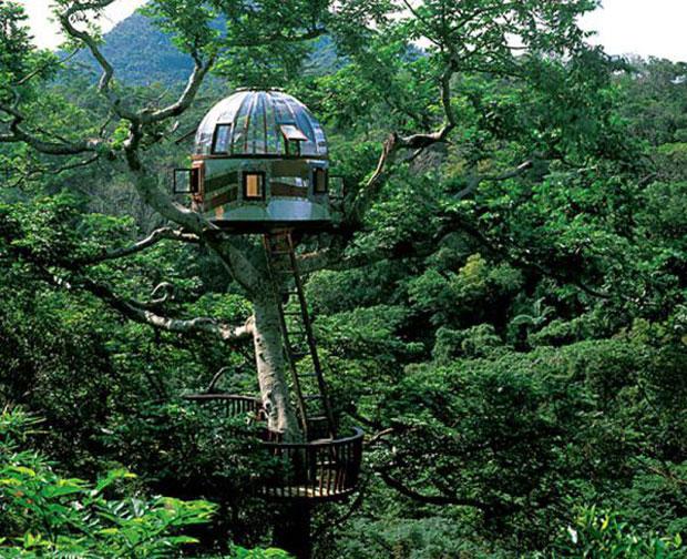 Maravillosas Casas De Arboles Abilia I Blog I Conciencia Sustentable - Casas-en-los-arboles