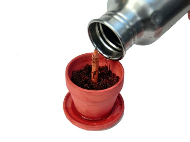 Sprout: un lápiz sustentable con semillas