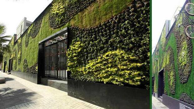 El ranking de los mejores jardines verticales abilia i for Plantas para muros verdes verticales