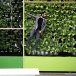 Fernando Ortiz Monasterio, el jardinero de México DF