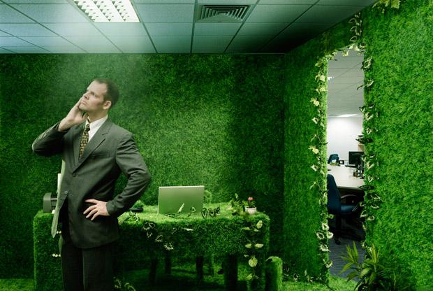 En México existen más de 2 millones de empleos verdes