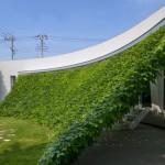 Green Screenhouse: una protección solar natural