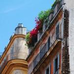 Grandes ejemplos de techos verdes (Parte II)