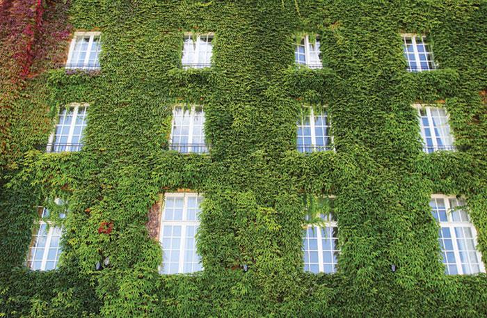 México propone estímulos fiscales a edificios sustentables