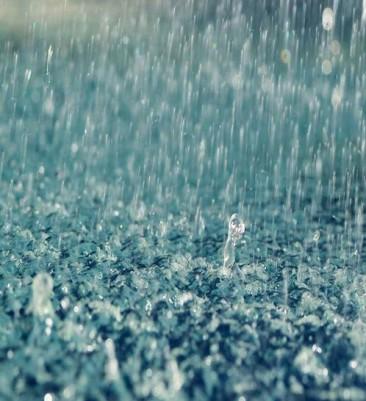 Estudiantes mexicanos crean electricidad con agua de lluvia