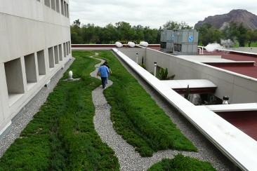 Cuidar espacios verdes implicará descuentos para impuestos en México DF