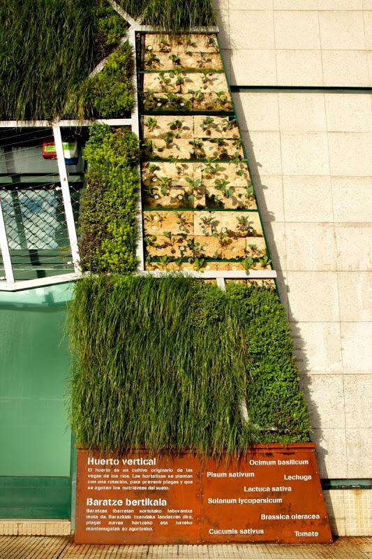 Jardín vertical del Palacio de Congresos de Vitoria-Gasteiz