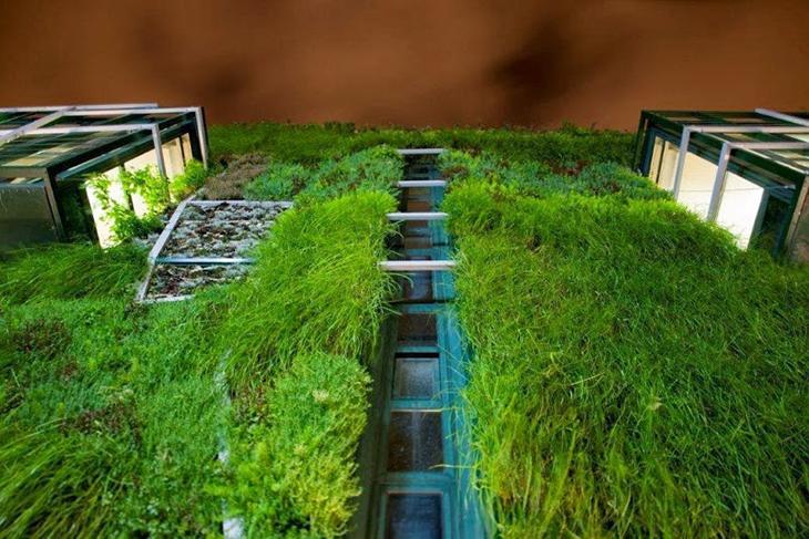Jard n vertical del palacio de congresos de vitoria for Ciudad jardin vitoria