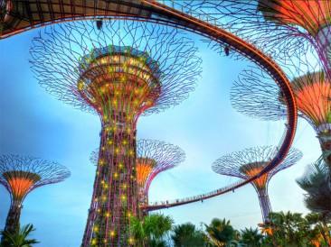 Los súper árboles de Singapur