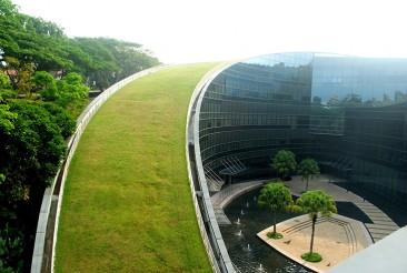 Las azoteas verdes de una escuela en Singapur