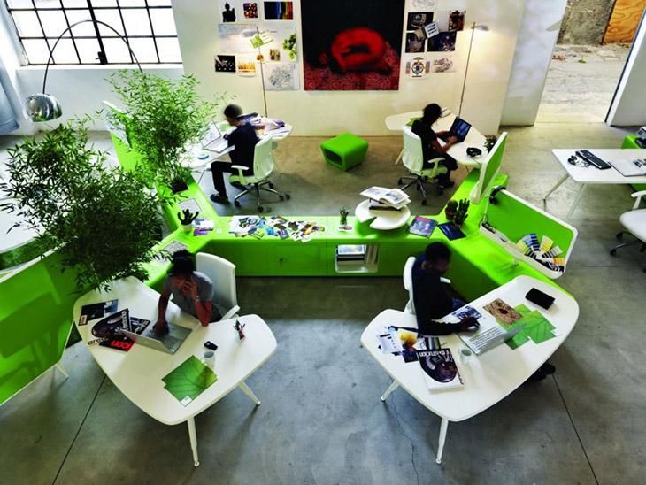 Tener plantas en la oficina aumenta la felicidad