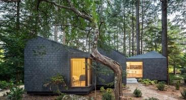 Ventajas de la arquitectura ecológica